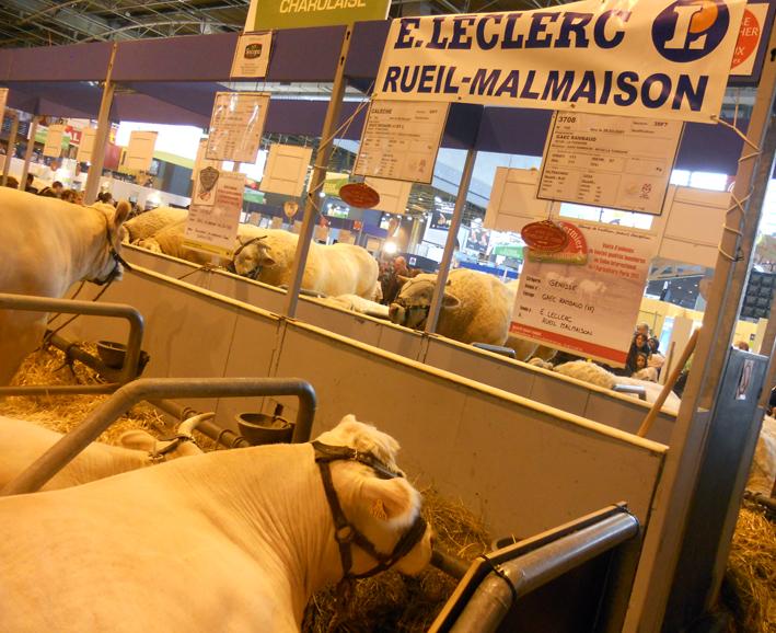 Leclerc et Carrefour font salon (chacun à sa manière)
